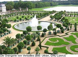 Versailles Park Orangerie Informationen